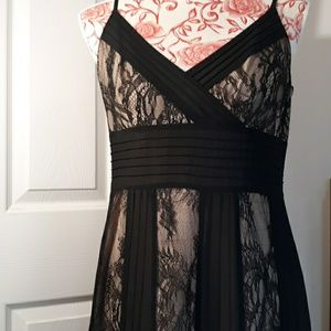 Lacy  Ann Taylor  Ladies Dress 8
